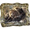 "Картина ""Медведица и медвежата"" M6-R1"